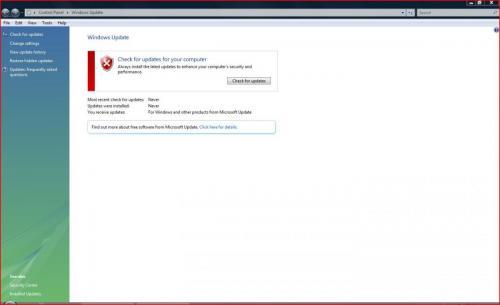 WinUpdateCapture.JPG